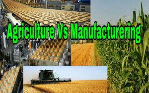 Agriculture Vs Manufacturing Industry