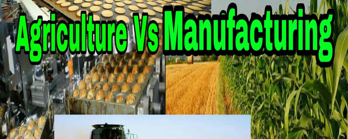 Agriculture Vs Manufacturing Industry in India Priorities for Future