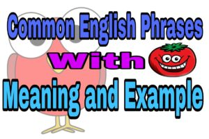 Top English Phrases and Idioms with Meaning and Examples