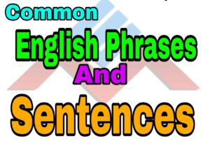 Common English Phrases and Sentences